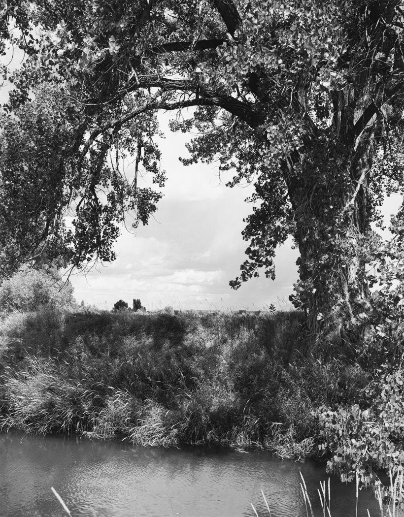 An irrigation canal, Larimer County, Colorado, 1994