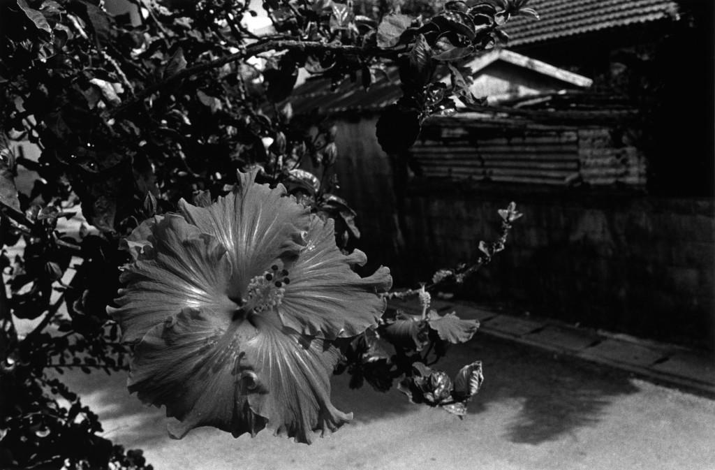 Okinawa Naha, 1996, Slow Boat